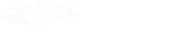 Jewish Community Foundation Orange County